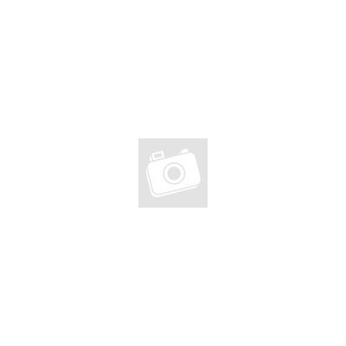 Színes Cica | 40x50 cm | DIY Kerettel